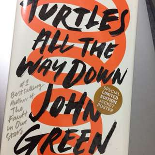 Turtles All The Way Down Hardcover