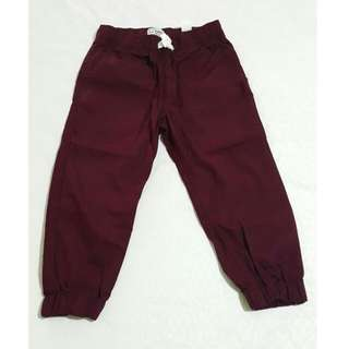 Brand New Boys Maroon Pants 4T