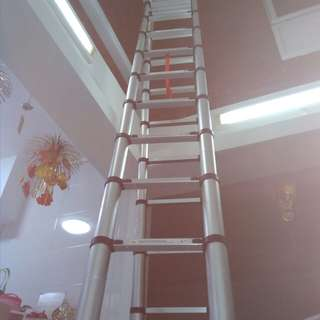 Rental of Telescopic ladder