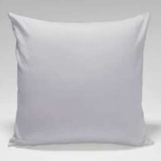 Throw Pillow B1T1