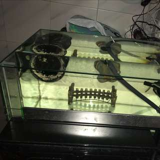 Fish Tank And Filter All In With Black Skirt Terrapin
