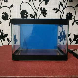 NEW curve mini fish tank