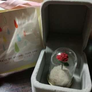 小王子玫瑰( 情人節禮物)