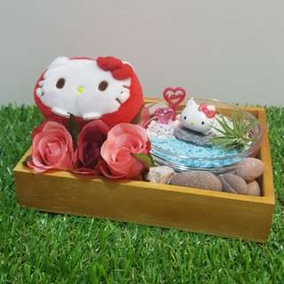 Happy Valentine's Day! Sanrio Hello Kitty Plush Toy & Figurine Air Plant