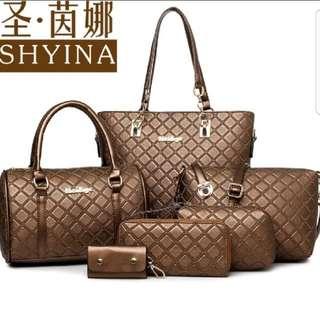 5 In 1 Bag