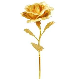 情人節必備金玫瑰