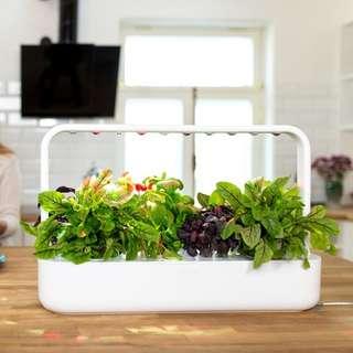 Smart Garden 9 - Click and Grow