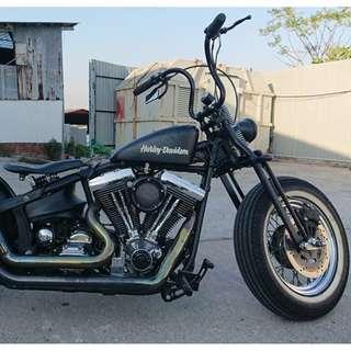 Harley Davidson Custom Bike
