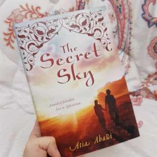 The Secret Sky (hardcover)