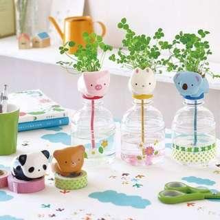 BN: Grow ur own clover plant: JAPAN Pet Pet Plant bottle (Seeds Provided)