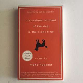 The Curious Incident of the Dog in the Nighttime