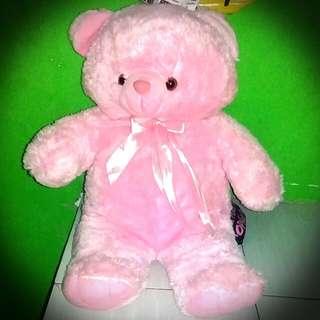 Teddy pink bear