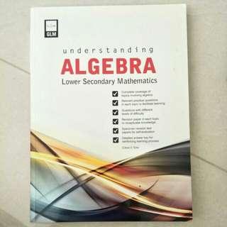 Lower Sec Algebra
