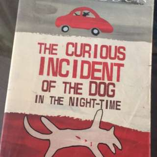 Curious incident of the dog in the night time (mark Haddon)