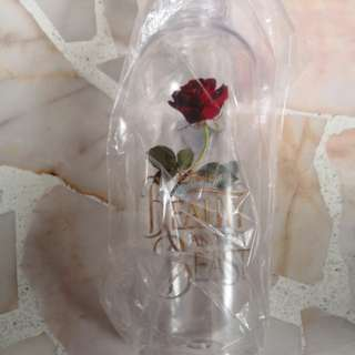 Beauty and the beast bottle