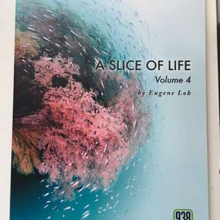 A slice of life by Eugene Loh