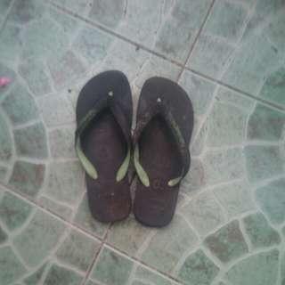 Havaianas slippers