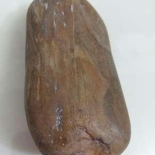 🚚 木化石