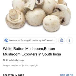 MUSHROOMS HOME GROWN AUTHENTIC QC PASSED