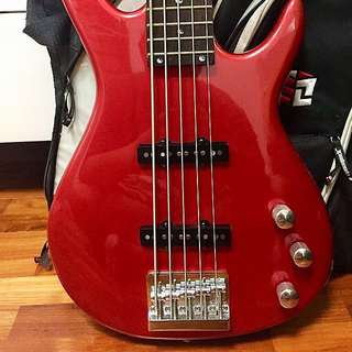 5 Strings Palmer Deluxe Bass