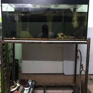 3ft fish tank with stand and pump