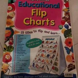 Educational flip chart