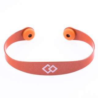 Colantotte Color Palette / Magnetic Bracelet