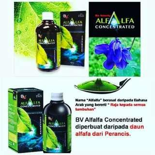 Bio velocity alfalfa