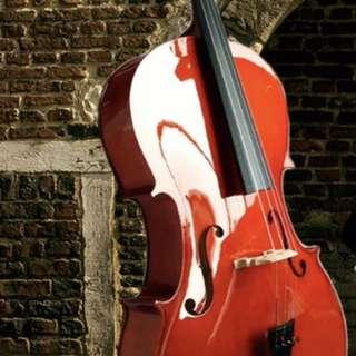 cello 二手大提琴 初學者用 (送松香)