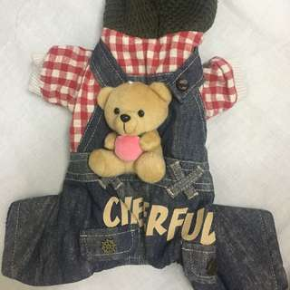 🚚 小熊鋪棉寵物衣服