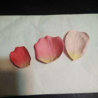 Laduree blush 花瓣胭脂
