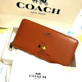 Coach 53773 Special Edition X PEANUTS Snoopy Accordion Zip Wallet in Calf Leather