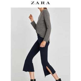 Zara navy pant