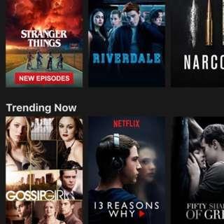 Netflix 1YEAR premium