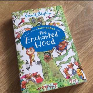 BN Gnid Blyton The Enchanted Wood