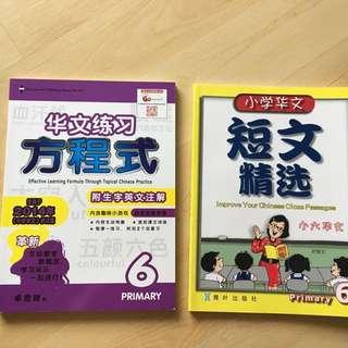 PSLE Chinese 方程式