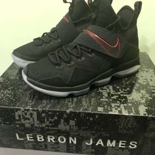 Lebron 14 Shoes  (SOLD)