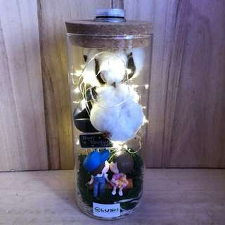 ❤️ LATEST! Valentine's Day/ V Day/ Valentine/ Christmas/ Birthday/ Congrats/ Farewell/ House warming- Dried Flowers Cotton Flower Couple Kissing Fairy Light Glass Jar