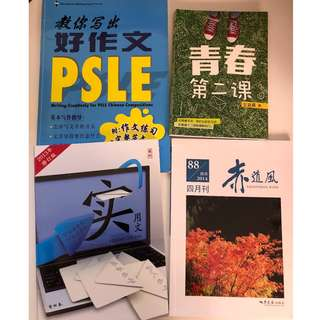 PSLE prep books (Chinese)