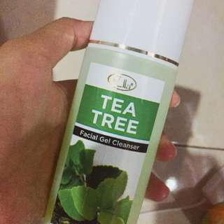 Facial Wash Tea Tree (Skin Care)