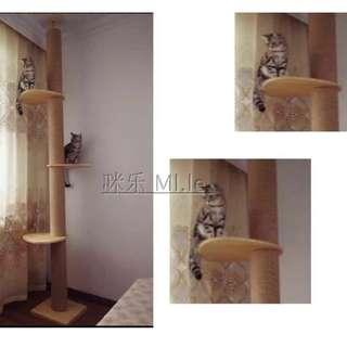 {In Stock} Cat Condo CHC-W