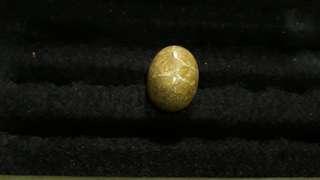Batu cincin ciliwung