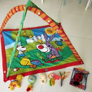 Tiny Love Gemini Deluxe 3-D Activity Playgym for newborn to 10 month baby