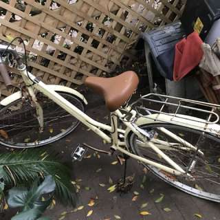 Beige Cruiser with basket Bicycle