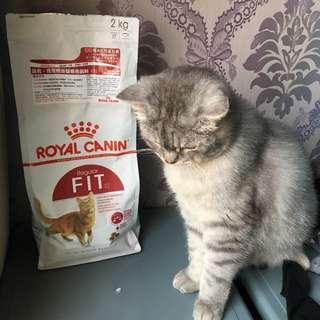 皇家 F32理想體態貓專用飼料