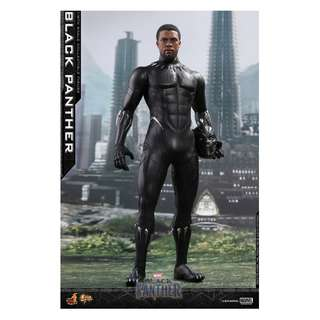 PO: Hot Toys – MMS470 – Black Panther – 1/6 scale Black Panther