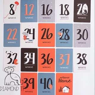 Pregnancy & Maternity Monthly MileStones Card