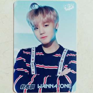 WANNA ONE 志訓 Yes card