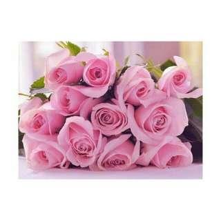 Valentine's Day Vday Rose Fresh Flower Gift V1 - CZJQS