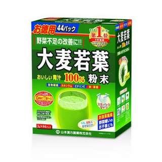 大麥若葉青汁(大盒裝)